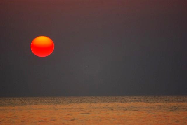 九十九里 赤い太陽 日の出 白子海岸_e0117266_1492481.jpg