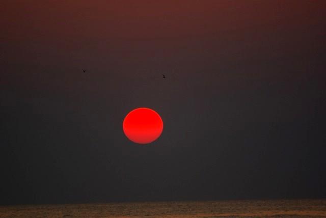 九十九里 赤い太陽 日の出 白子海岸_e0117266_151225.jpg