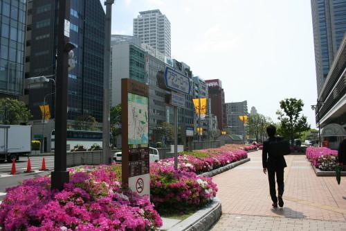 「フラワーロード 神戸」の画像検索結果