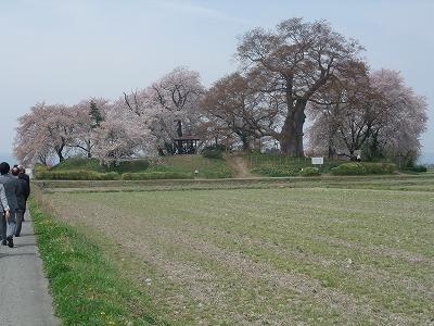 「直江兼続公生誕の地」議員会研修_f0019487_93587.jpg