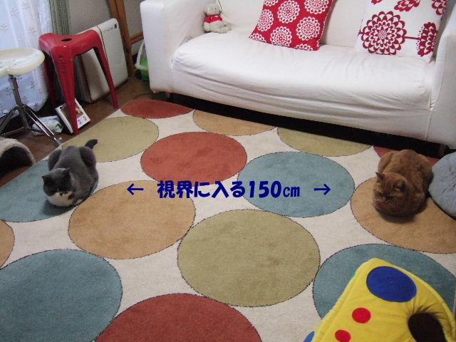 f0032020_19444327.jpg