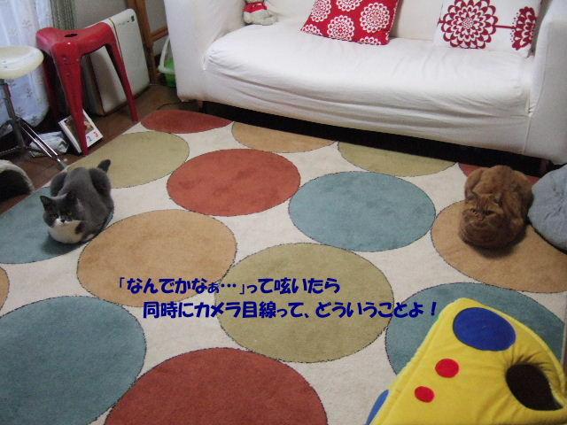 f0032020_1945968.jpg