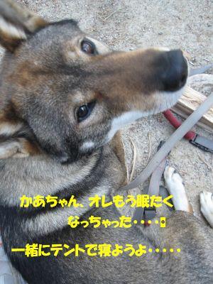 f0143123_16494177.jpg