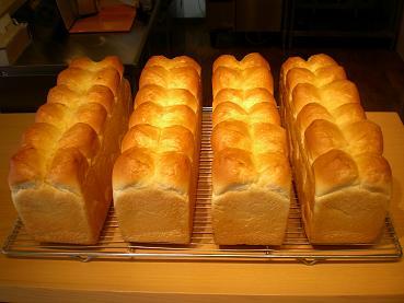 パンの試作はじまる_c0172969_20374471.jpg