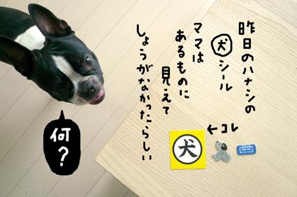 f0170072_17401250.jpg