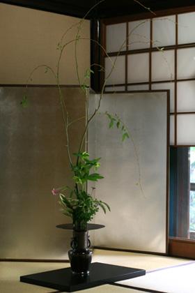 酢蔵開きⅤ 和のお花_f0127281_1702086.jpg