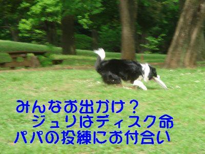 b0101991_21104495.jpg