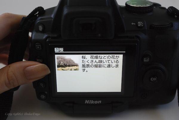 d0114093_240066.jpg