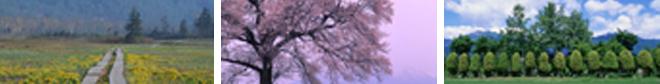 f0174894_12493185.jpg