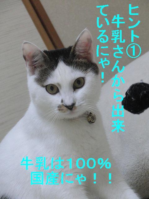 e0171996_1631169.jpg