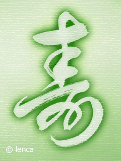 浜松で花だらけ_c0053520_010355.jpg