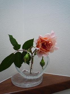 f0150620_1712639.jpg