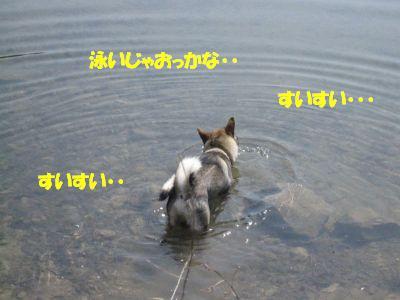 f0143123_8504079.jpg