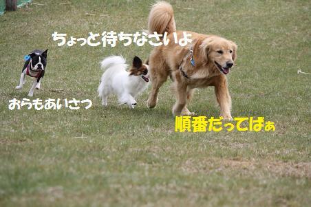 f0114128_18474336.jpg