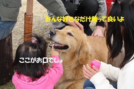 f0114128_18562419.jpg