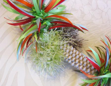 Palm Tree パームツリー_c0196240_134531.jpg