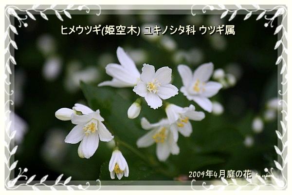 f0104569_16314229.jpg