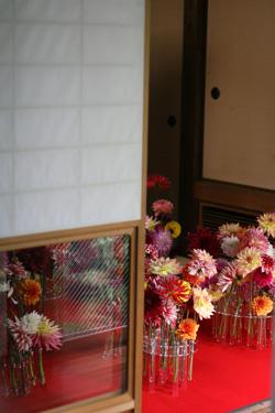 酢蔵開きⅧ ヌーベルジャポン_f0127281_10572489.jpg