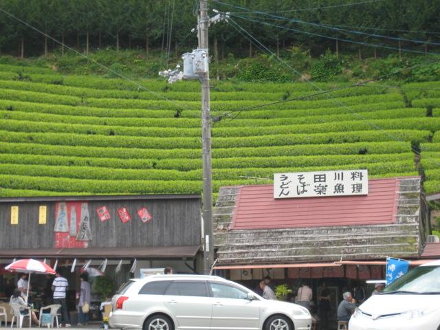 高知県 津野町_d0043390_14584770.jpg
