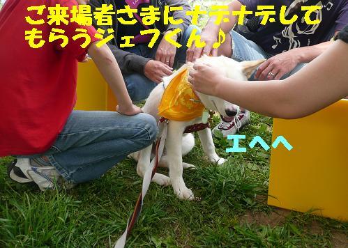 f0121712_22564645.jpg
