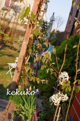 f0170524_13151369.jpg