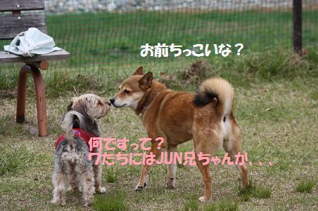 f0114128_18391871.jpg