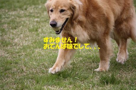 f0114128_18415645.jpg