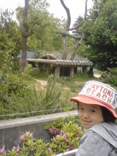 神戸王子動物園~パンダがいるのだ!~ #347_e0068533_1582166.jpg