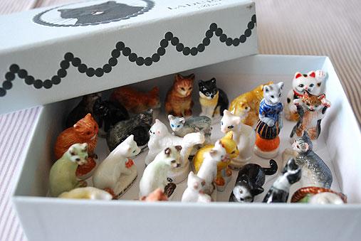 箱猫_c0120342_11551845.jpg