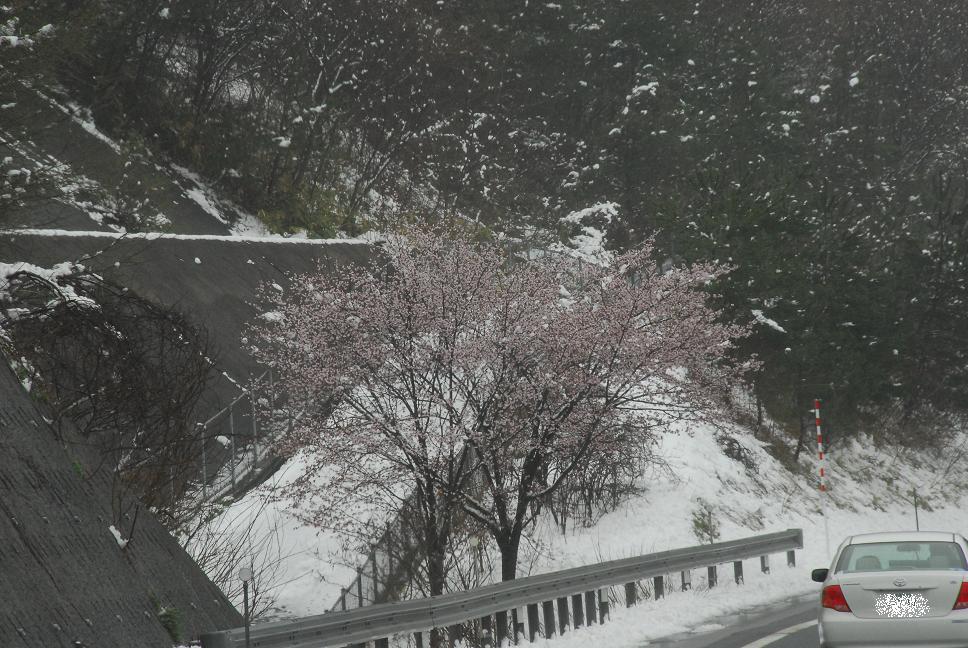 北海道&みちのくツアー part2_a0049296_9523484.jpg