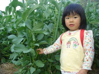 畑の野菜とマコ&FFの打ち上げ!_e0166301_2212288.jpg