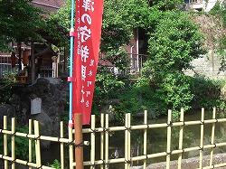 江戸屋敷にあった神社(9) 金丸稲荷神社_c0187004_1857279.jpg