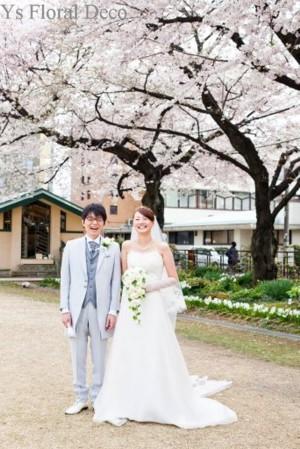 満開の桜と満開の笑顔 桜の咲く日に_b0113510_11514038.jpg