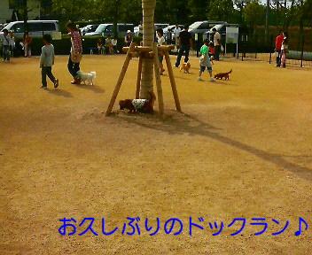c0121141_1822827.jpg