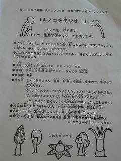 f0169942_1541715.jpg