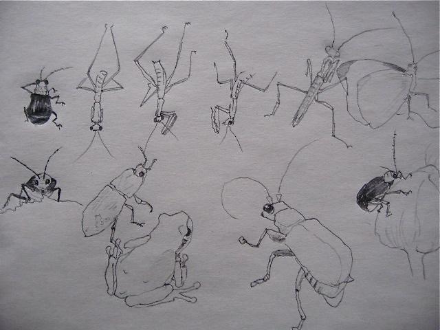 GWお絵描きシリーズ〜庭で絵を描こう④_d0101846_622361.jpg