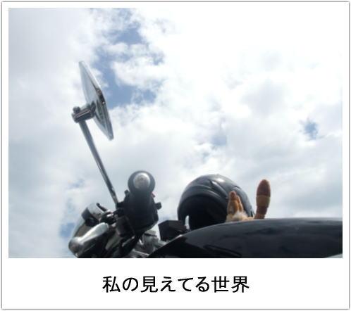 f0004182_22584676.jpg