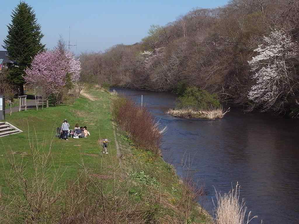 5月6日、青葉公園の花など_f0138096_16562756.jpg