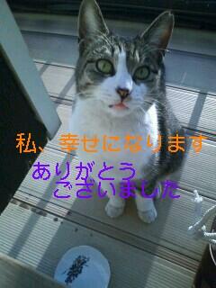 c0158916_20432933.jpg