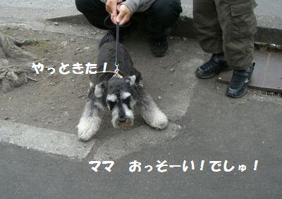 f0197317_11144360.jpg