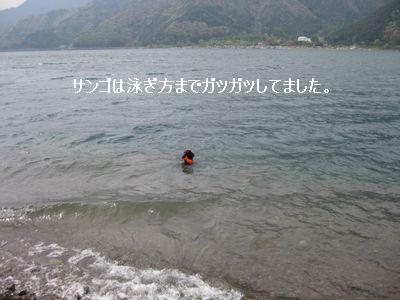 b0148945_22193474.jpg