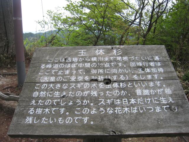 比叡山延暦寺_f0205367_19461379.jpg