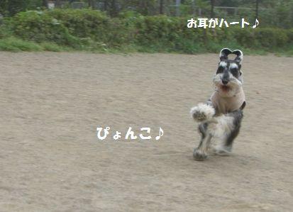 f0197317_14462666.jpg