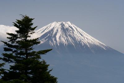 富士山を眺める山旅 3日目 毛無山登山 _d0055236_19171179.jpg