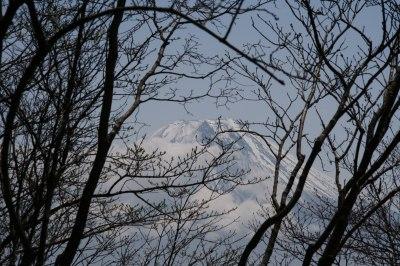 富士山を眺める山旅 3日目 毛無山登山 _d0055236_202246.jpg
