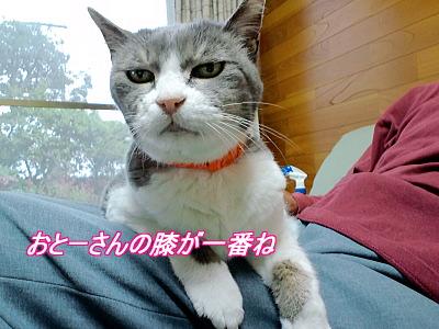 b0097848_11472093.jpg