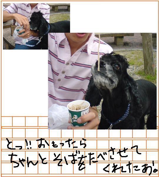 f0096569_6363441.jpg