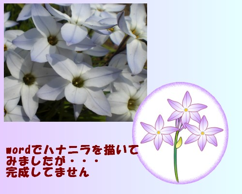 e0085772_2222480.jpg