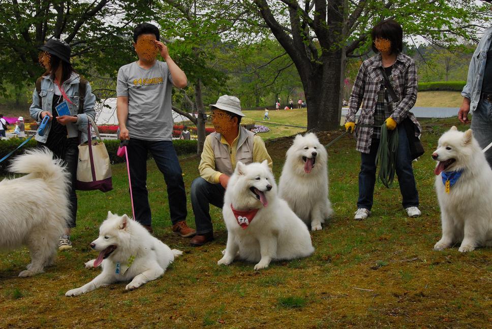 北海道&みちのくツアー part10_a0049296_821386.jpg