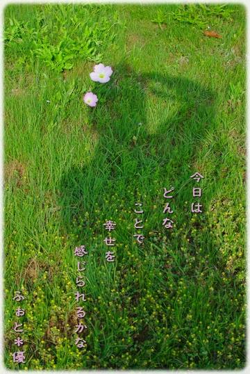 f0111908_1725417.jpg